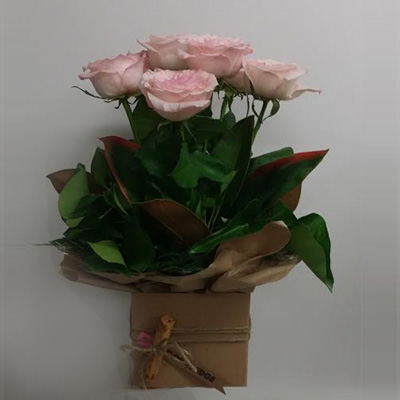 flower-box-cinnamon-box-roses